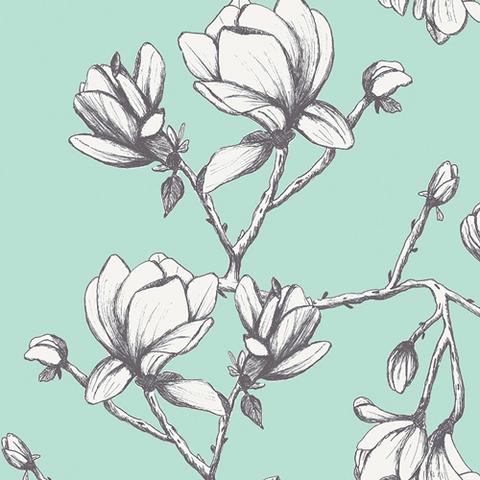 Art Gallery - Wild Blooms / 22036-Magnolia-Study-Fresh