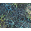 Banyan Batiks - Nostalgic Vibes / Blue Green Circles on Grey / 80012-63
