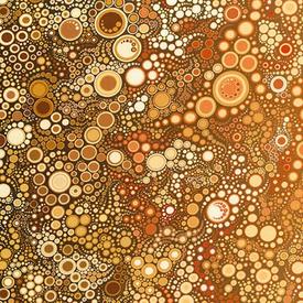Robert Kaufman - Effervescence / 17061-169 EARTH