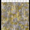 Jason Yenter - COSMOS - Cubes / Yellow / 9COS-1