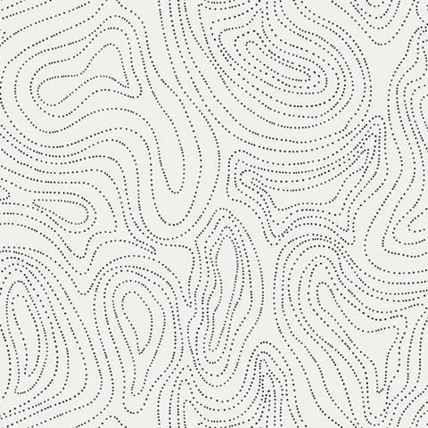 Art Gallery - Capsules / Raise the Volume - Waves of Echo / CAP-RV-8001