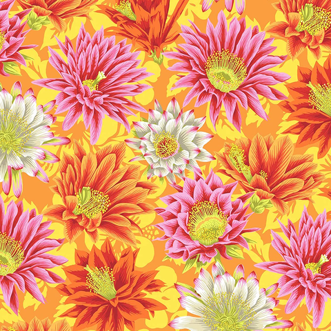 Kaffe Fassett - Cactus Flower / PWPJ096 YELLOW