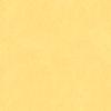 Clothworks - ORGANIC POPLIN FABRIC / Everyday Organic Solids / Y0890-8 / Light Yellow