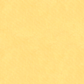 Clothworks - ORGANIC POPLIN FABRIC / Everyday Organic Solids / Y0890-8 / Light Yellow