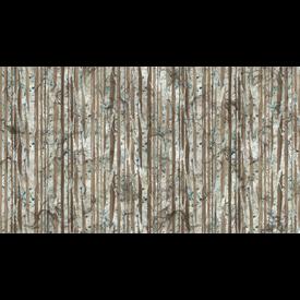 Nothcott - Melanie Samra / Whispering Pines / Birch Tree Trunks / Brown / DP23754-36