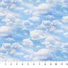Northcott - Naturescapes / Digital Prints / Clouds / DP23707-42