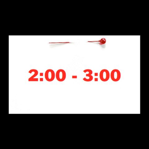 Appointment - April 10th - Saturday (2:00pm-3:00pm)