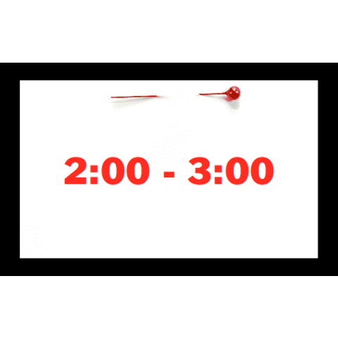 Appointment - April 24th - Saturday (2:00pm-3:00pm)