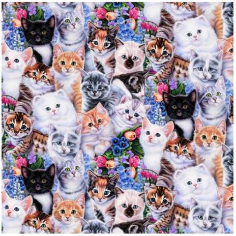 CP - Animal Love / Kittens & Flowers / Digital Print /