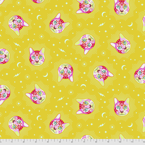 Tula Pink -  Curiouser and Curiouser / Cheshire / PWTP164.WONDER