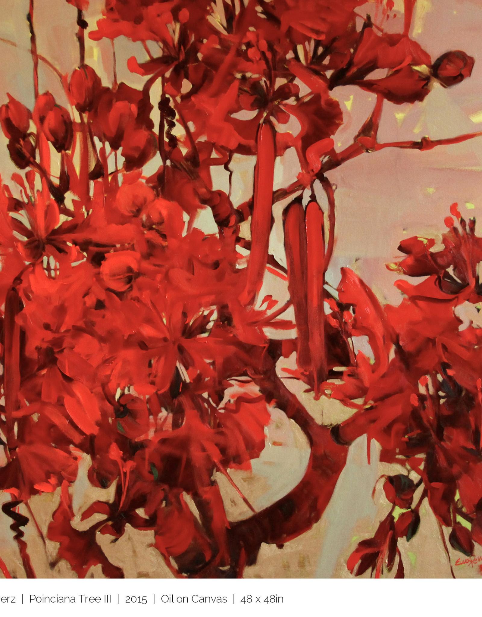 """Poinciana Tree III - Oil on Canvas 46"""" x 46"""" Ewa Perz"""