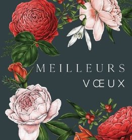 Meilleurs Voeux (Best Wishes) Greeting Card