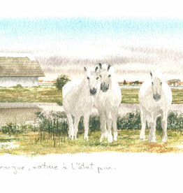 PGC La Camargue Greeting Card - 8 1/4 x 4 1/4