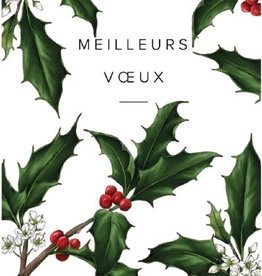 "PGC Meilleurs Voeux (Best Wishes) Greeting Card - 4 1/4"" x 6"""