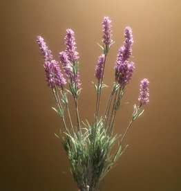 Lavender Stem - Mixed color - 23.6""