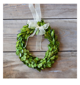 "Boxwood 8"" Wreath"