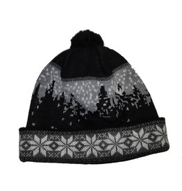 Swix Snowfall Hat Black