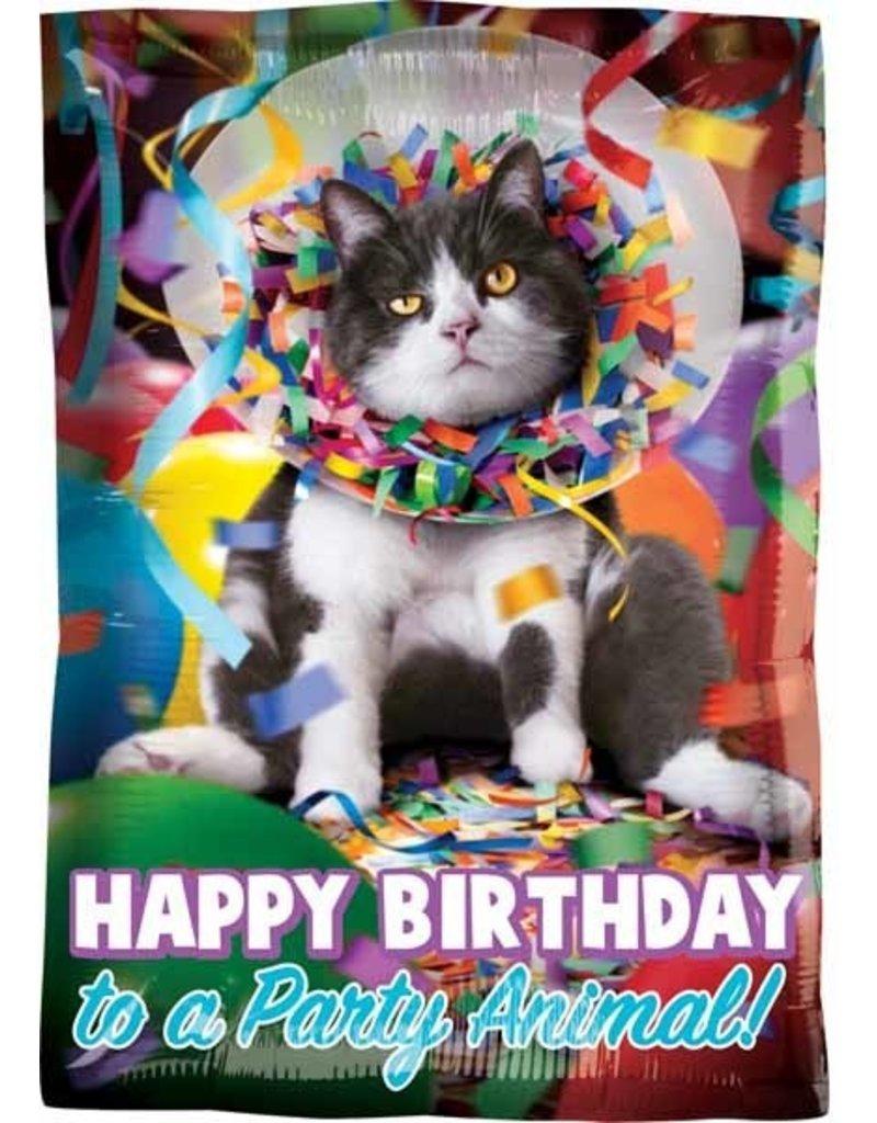 "Avanti Party Animal Birthday 18"" Mylar Balloon"