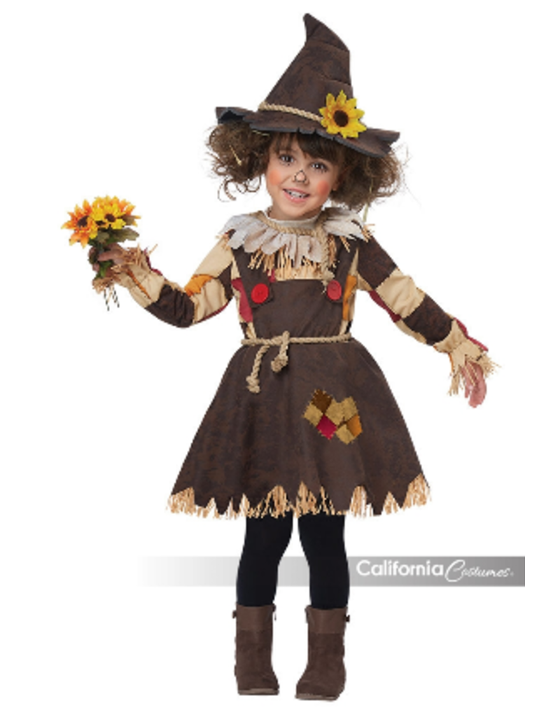 Pumpkin Patch Scarecrow Large Toddler Costume
