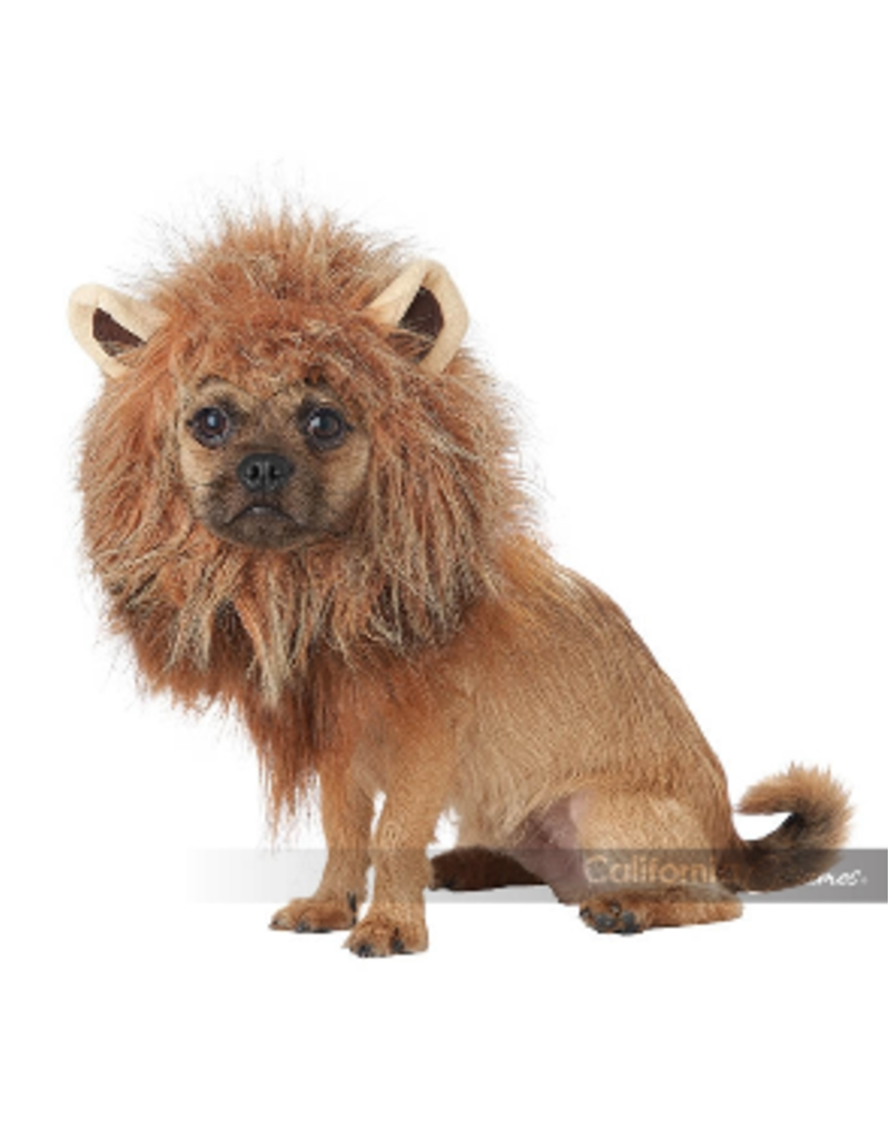 Dog Costume King of the Jungle Small