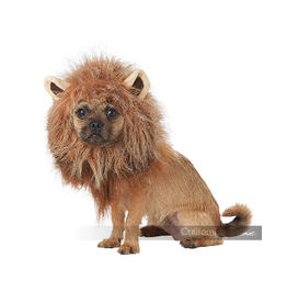 Dog Costume King of the Jungle Medium