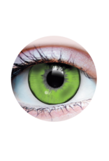 PRIMAL® Lizard King Contacts (90 Day)