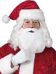 Adult Santa Beard, Wig, Glasses Accessory Set