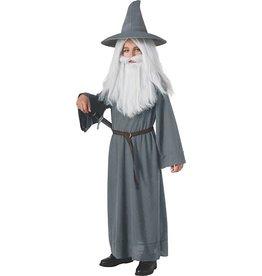 Child Gandalf Large (12-14)