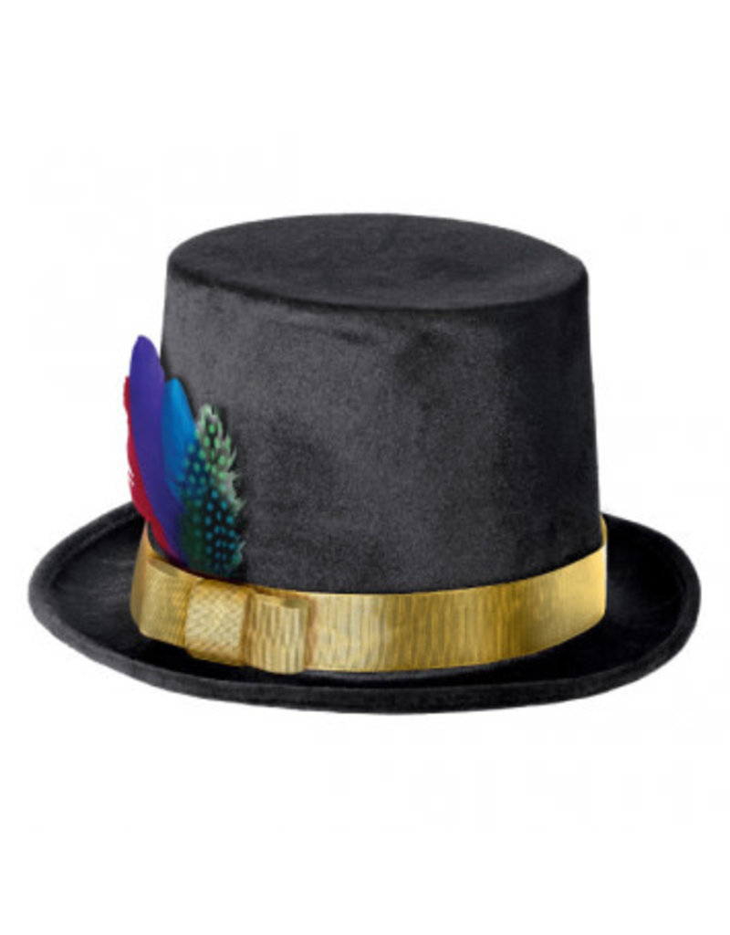 Fancy Feather Top Hat