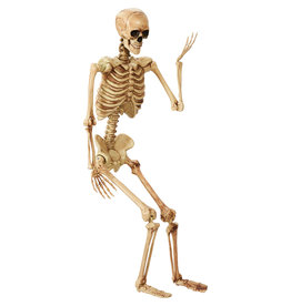 Pose And Hold Lifesize Skeleton 5'