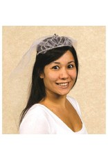 Bride to Be Deluxe Tiara with Veil