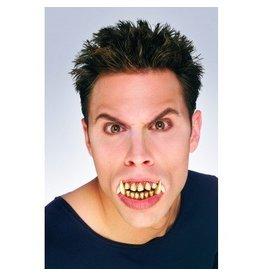 Stay Put Werewolf Teeth