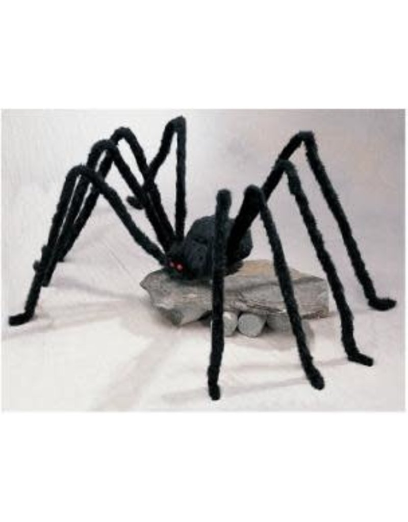 Black Giant Spiders