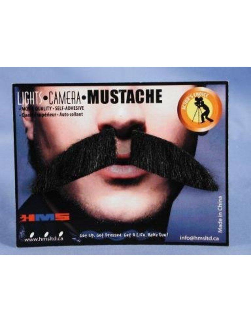 Dapper Grey Moustache