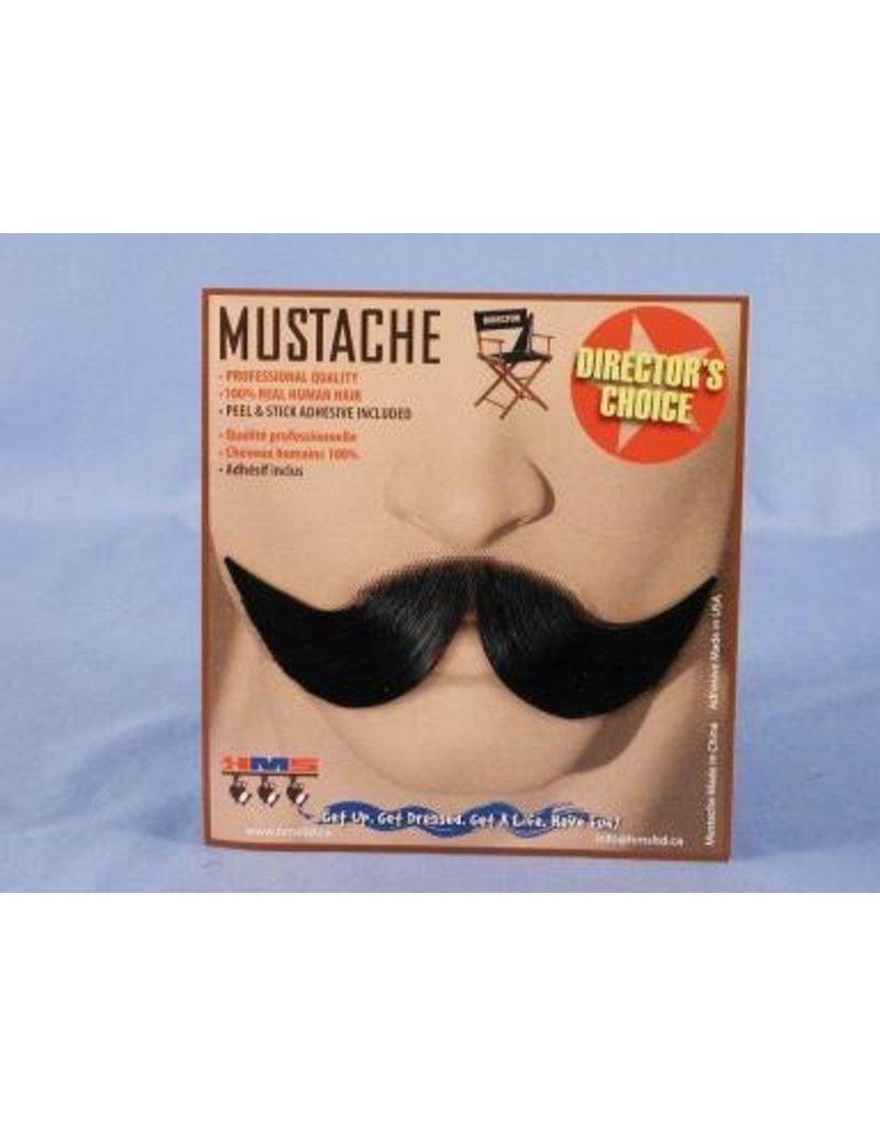 Elegant Grey Moustache