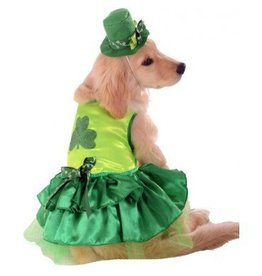 Dog Costume Lucky Small