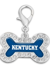 AccessHERize Kentucky Wildcats Pet Collar Charm