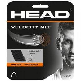 Head Velocity MLT 17G