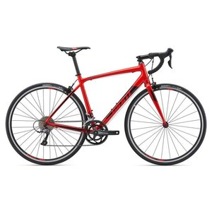 Giant Contend 3 2019