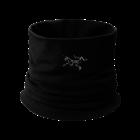 Arcteryx Rho LTW Neck Gaiter 2020