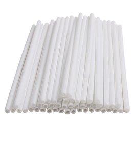 Deco Pack Plastic Sucker Sticks (White 6 inch)