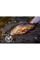 Temple Fork Outfitters CLOSEOUT TFO Axiom II