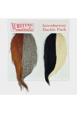 Whiting Hackle Farms Introductory Hackle Pack