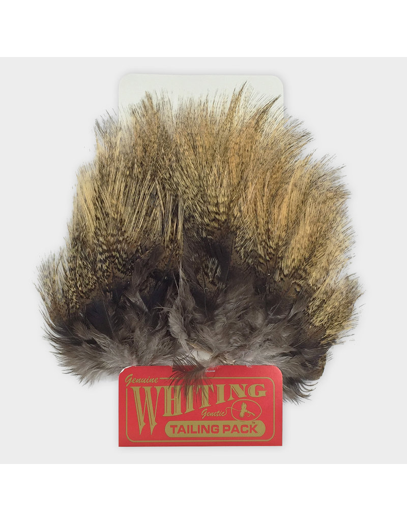 Whiting Hackle Farms Whiting Coq De Leon Tailing