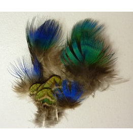 Nature's Spirit Indian Blue Peacock Body Feathers Natural Iridescent Blue