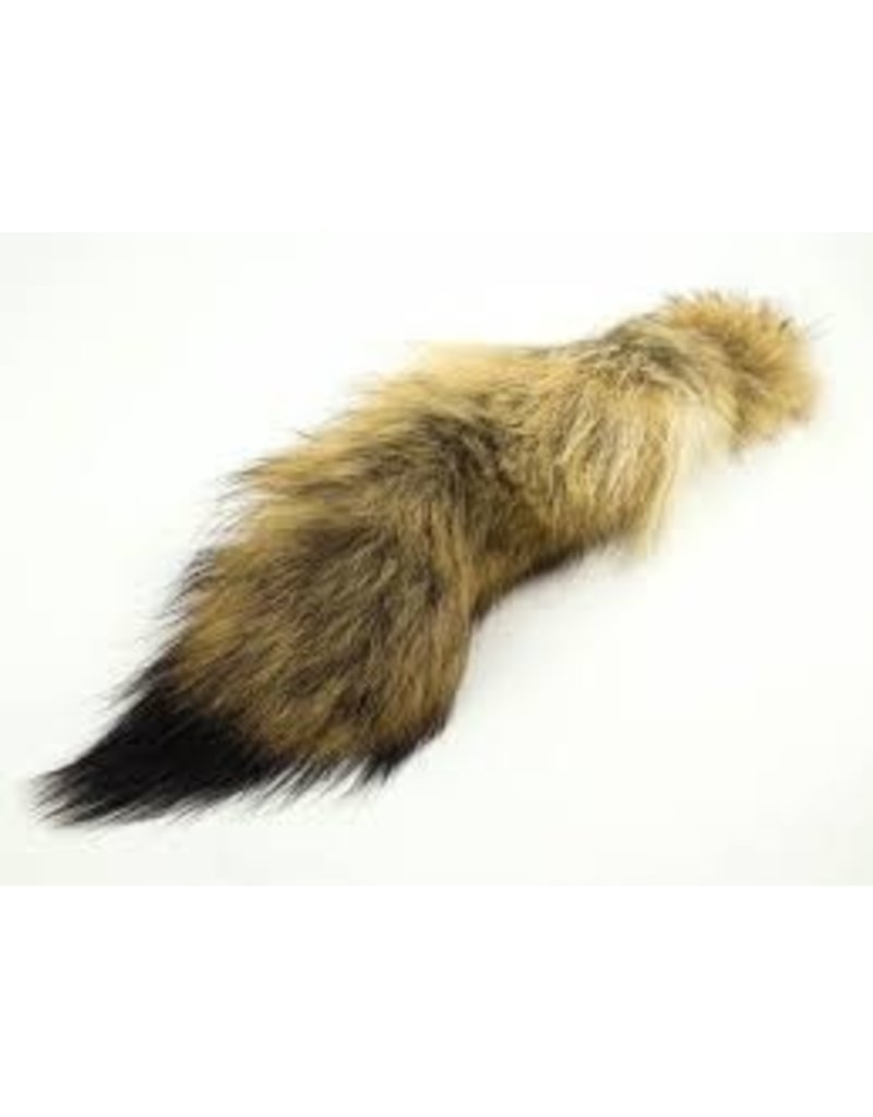 District Angling Coyote Tail