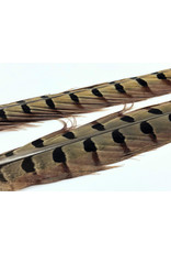 Wapsi Fly Pheasant Tail Feathers