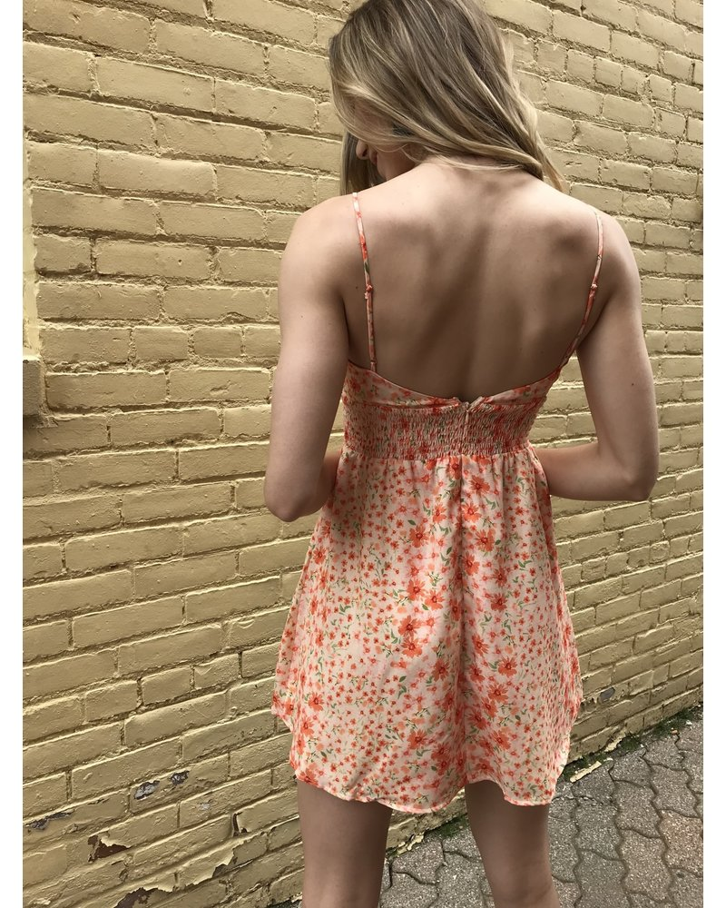 hello miss laney dress