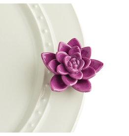Nora Fleming, LLC Get Growing Succulent Mini