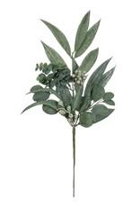 California Euclayptus Spray